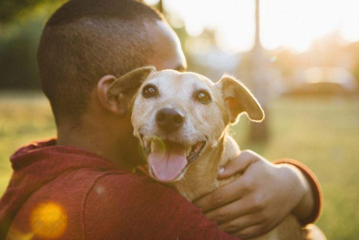 Man hugs happy mixed-breed dog