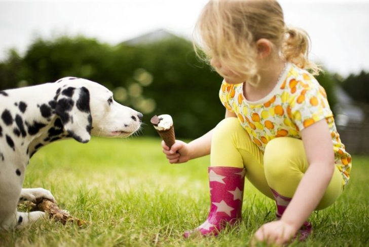 Girl feeding dog ice cream