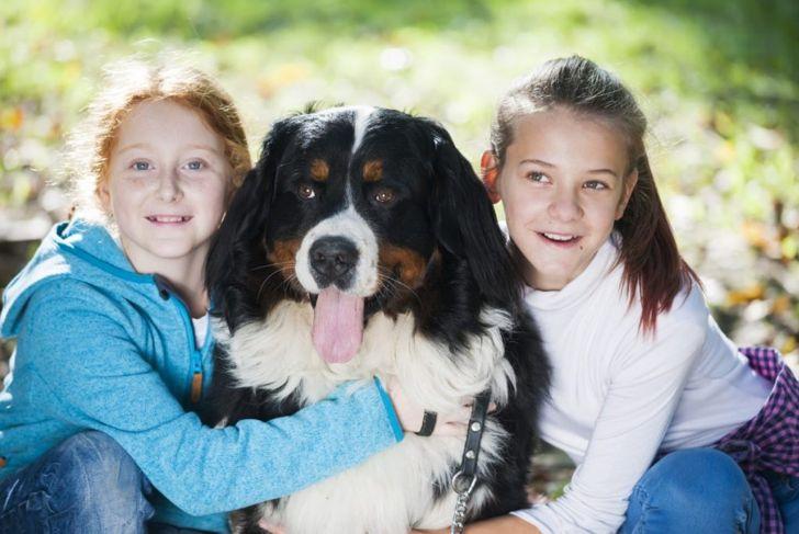 Good Family Dog