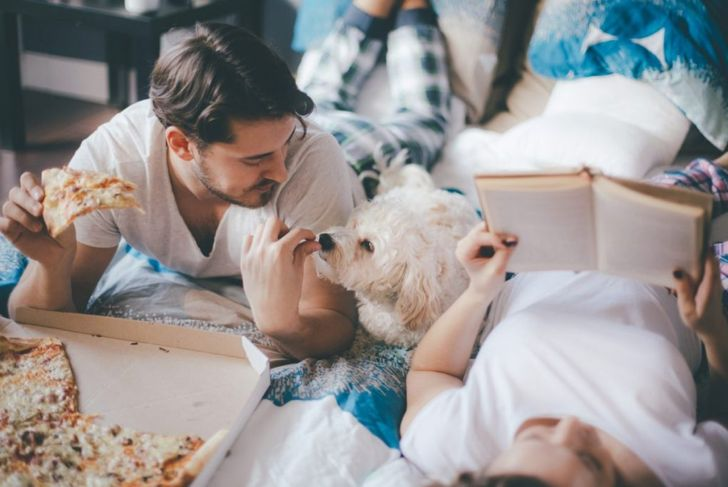 Dog Eating Pizza