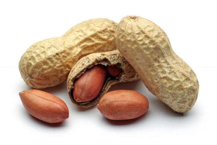 dogs peanut shells