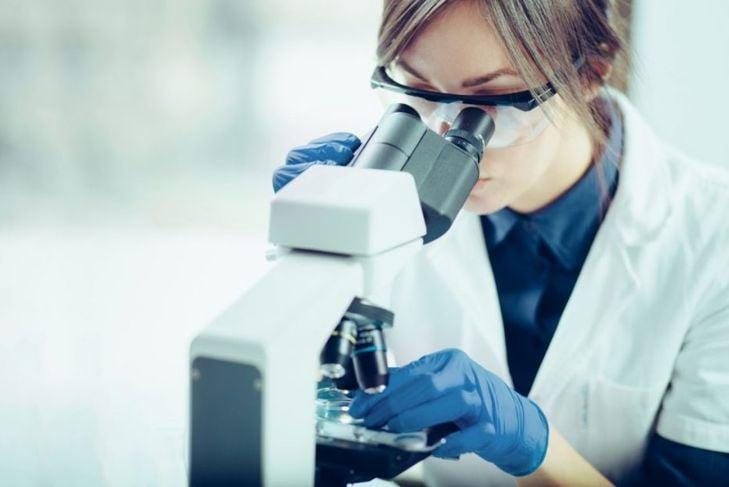 hookworm dog tests diagnosis