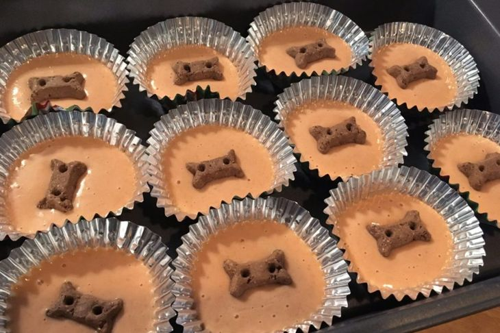 dog food, treats, cinnamon, mixture