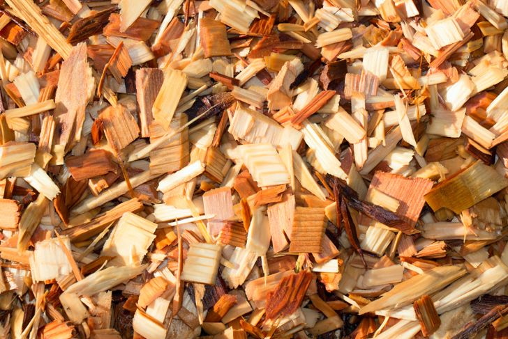A texture shot of fresh wet garden wood chips or mulch with morning sunshine.