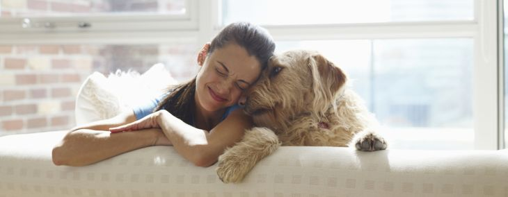 How Does a Pet's Health Mimic its Owner's?