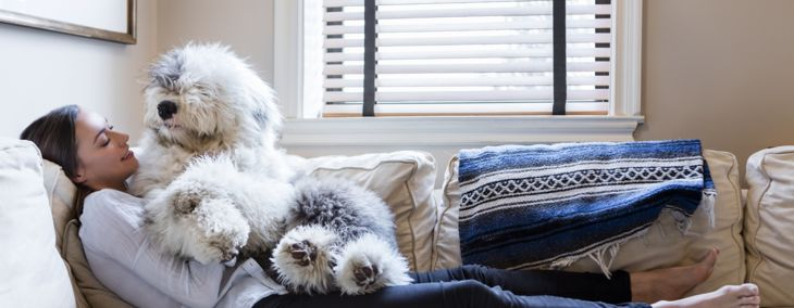 Easy DIY Hacks Every Pet Owner Needs to Know