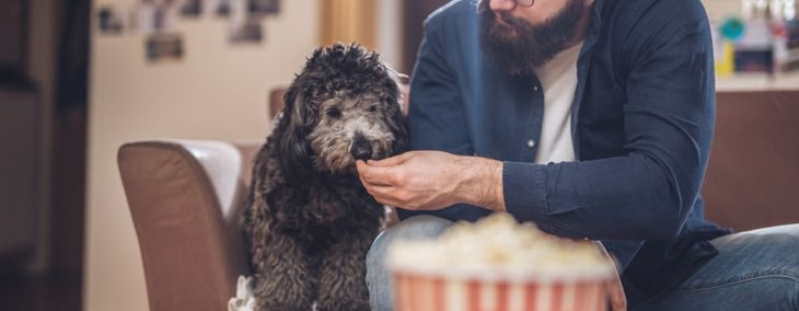 Is Popcorn Bad for Dogs?