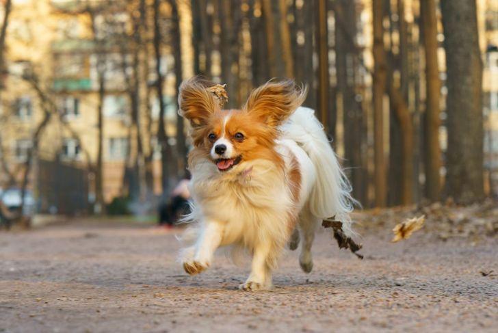 running outside exercise