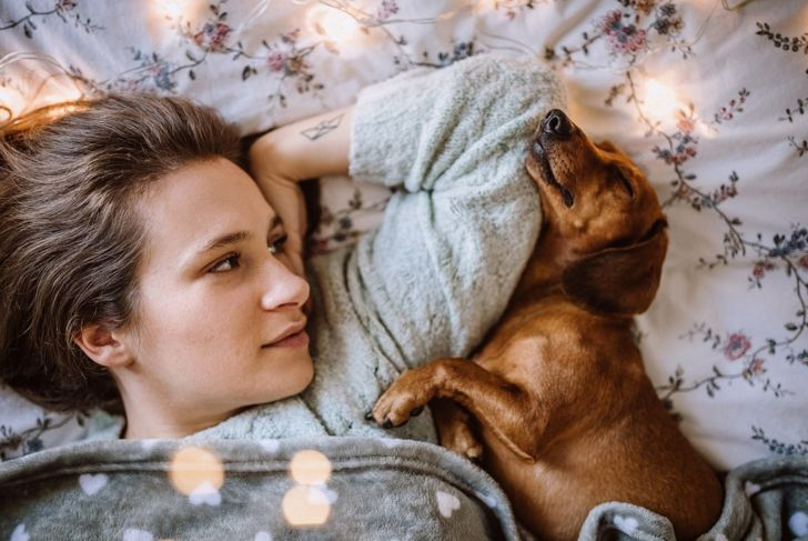 miniature dachshund dog with older child