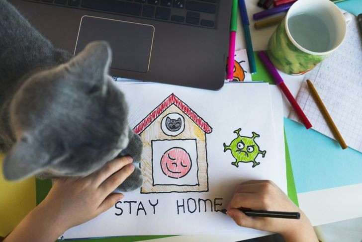 Cat with drawing stay home
