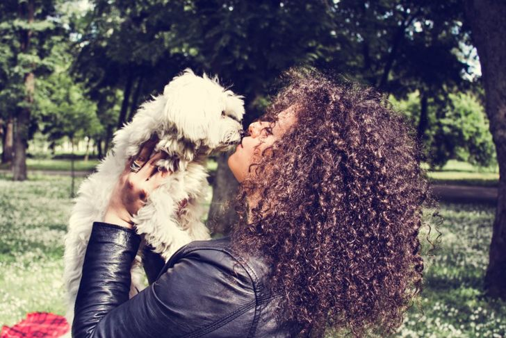 This Maltipoo gets some kisses from its owner.