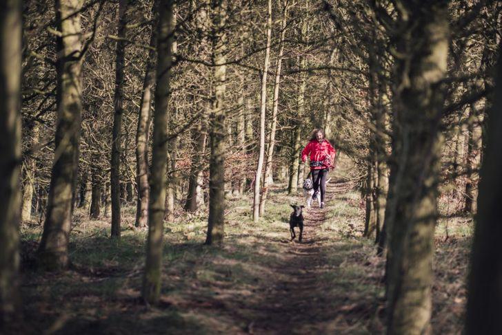 outdoor exercise run