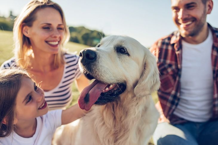 happy dog with their family
