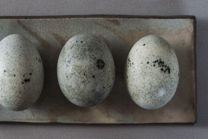Enjoy the rich flavor of your duck's abundant eggs.