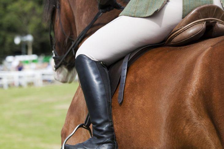 Horse being ridden