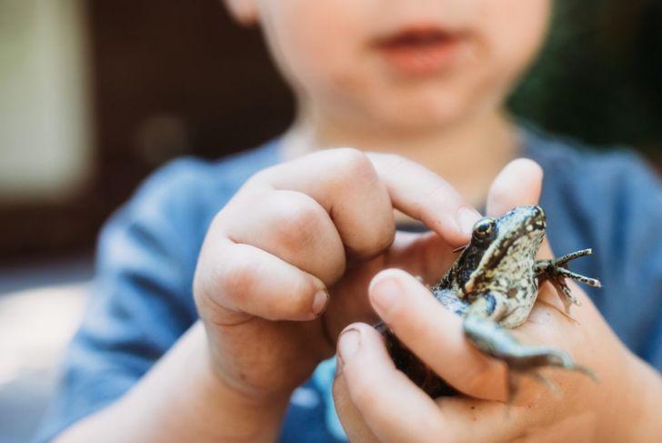 Child holding frog.