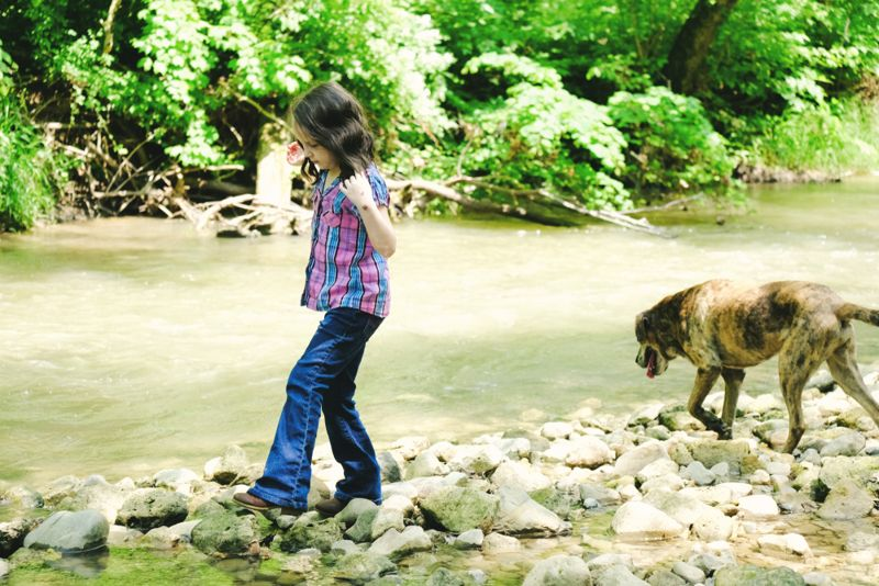 Childhood lifestyle shows young girl with pet Catahoula dog at creek through woods for summer fun.